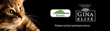 http://s3.uploads.ru/t/QPjT7.png