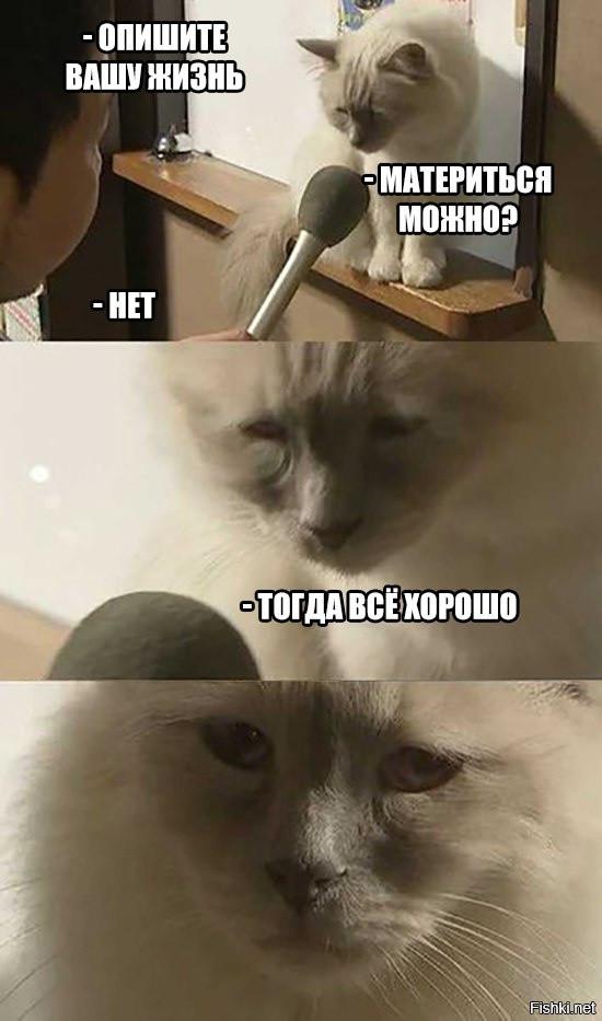 http://s3.uploads.ru/t/QX1Dc.jpg