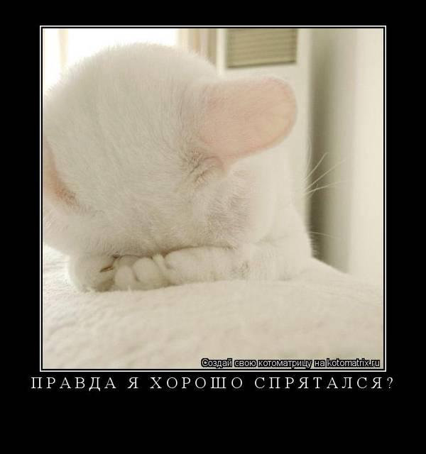 http://s3.uploads.ru/t/QuZGm.jpg