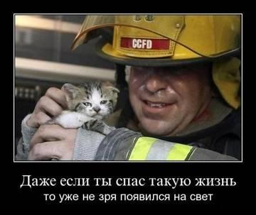 http://s3.uploads.ru/t/QznM4.jpg