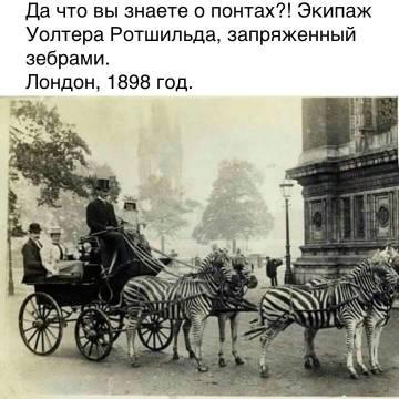 http://s3.uploads.ru/t/R0DHh.jpg