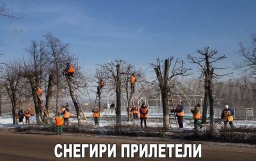 http://s3.uploads.ru/t/RA9NW.jpg