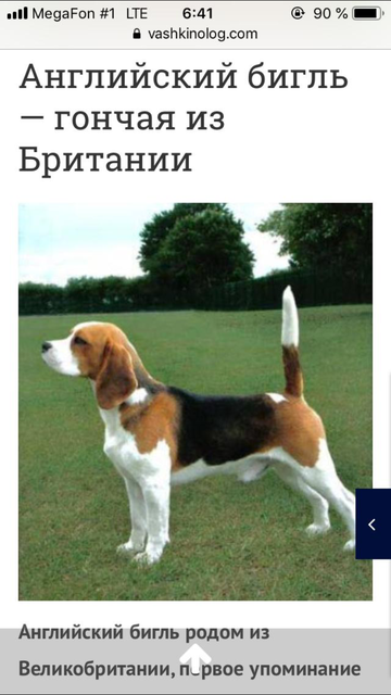 http://s3.uploads.ru/t/REaze.png
