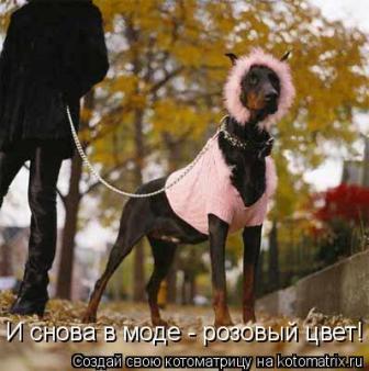 http://s3.uploads.ru/t/RIiMb.jpg
