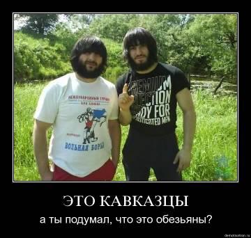 http://s3.uploads.ru/t/RJfyL.jpg