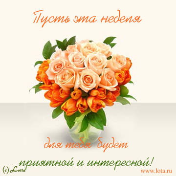 http://s3.uploads.ru/t/S7CBp.jpg