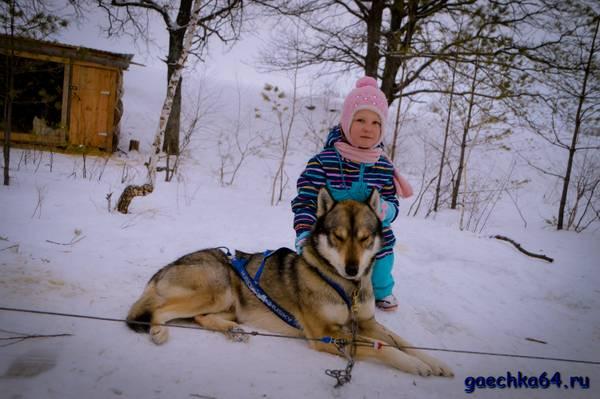 http://s3.uploads.ru/t/SILRO.jpg