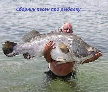 http://s3.uploads.ru/t/SeY29.jpg
