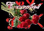 http://s3.uploads.ru/t/SgRes.png