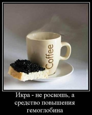 http://s3.uploads.ru/t/ShNHE.jpg