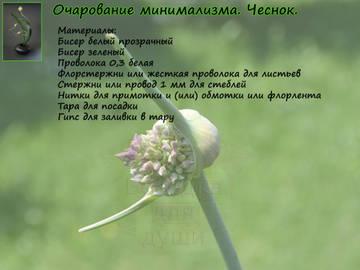 http://s3.uploads.ru/t/TGWxs.jpg