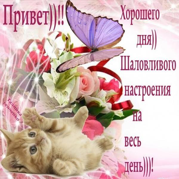 http://s3.uploads.ru/t/TJhQt.jpg