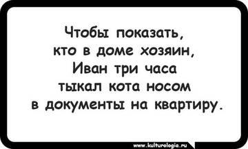 http://s3.uploads.ru/t/TN0kt.jpg