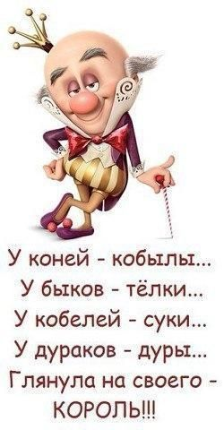 http://s3.uploads.ru/t/Tr2IH.jpg