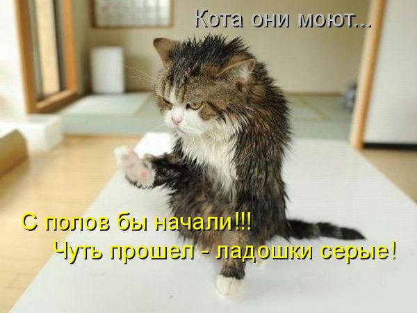 http://s3.uploads.ru/t/TtGE0.jpg