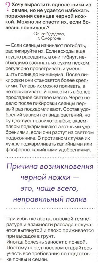 http://s3.uploads.ru/t/U5BjD.jpg