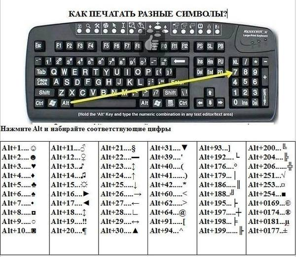 http://s3.uploads.ru/t/UCNyd.jpg