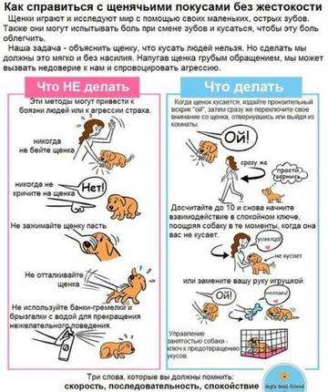 http://s3.uploads.ru/t/UjaBs.jpg