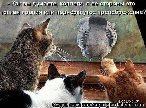 http://s3.uploads.ru/t/Urhid.jpg