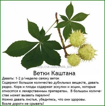 http://s3.uploads.ru/t/WJlHo.jpg