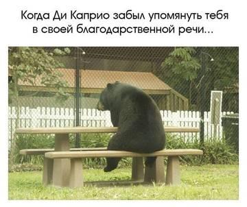 http://s3.uploads.ru/t/WpSGD.jpg