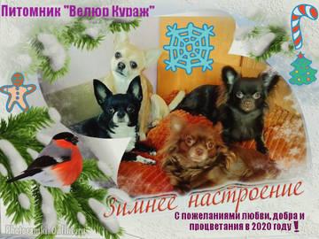 http://s3.uploads.ru/t/WzQqy.jpg