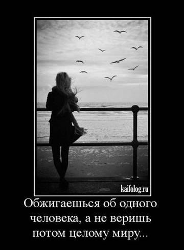 http://s3.uploads.ru/t/XNe3s.jpg