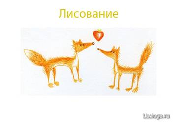 http://s3.uploads.ru/t/Xhy68.jpg