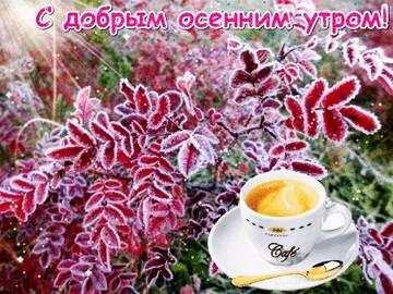 http://s3.uploads.ru/t/XmaEz.jpg