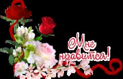 http://s3.uploads.ru/t/XujnM.png