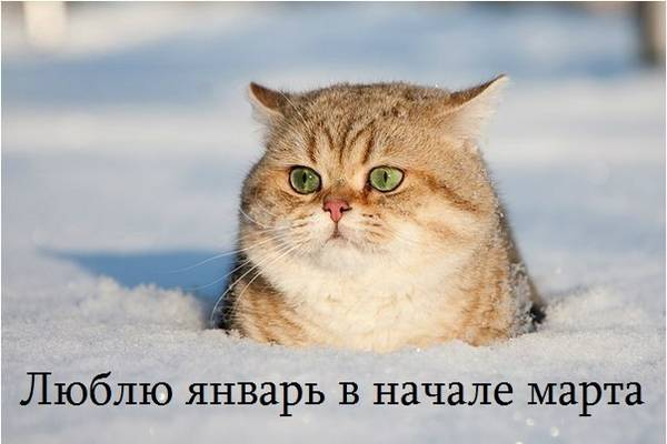 http://s3.uploads.ru/t/XwUo4.jpg