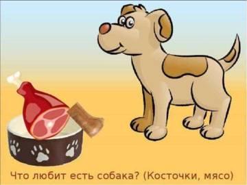 http://s3.uploads.ru/t/Y7Z1n.jpg