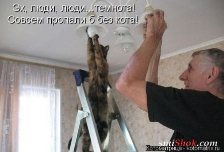 http://s3.uploads.ru/t/YDwfC.jpg