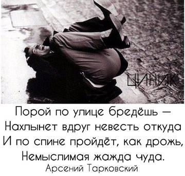 http://s3.uploads.ru/t/YL315.jpg