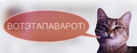 http://s3.uploads.ru/t/YOHPn.jpg