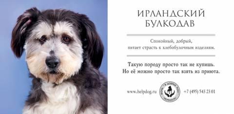 http://s3.uploads.ru/t/YQEI3.jpg
