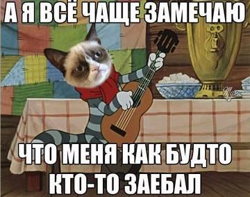 http://s3.uploads.ru/t/YZEyG.jpg