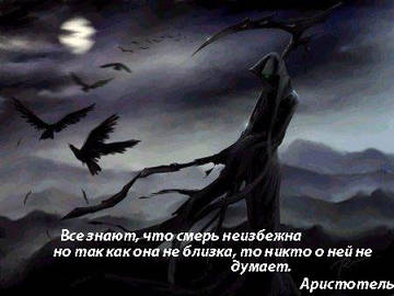 http://s3.uploads.ru/t/YkyZp.jpg