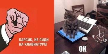http://s3.uploads.ru/t/Yyl5L.jpg