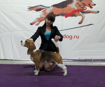 http://s3.uploads.ru/t/ZA9H5.jpg