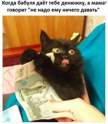 http://s3.uploads.ru/t/ZkrJI.jpg