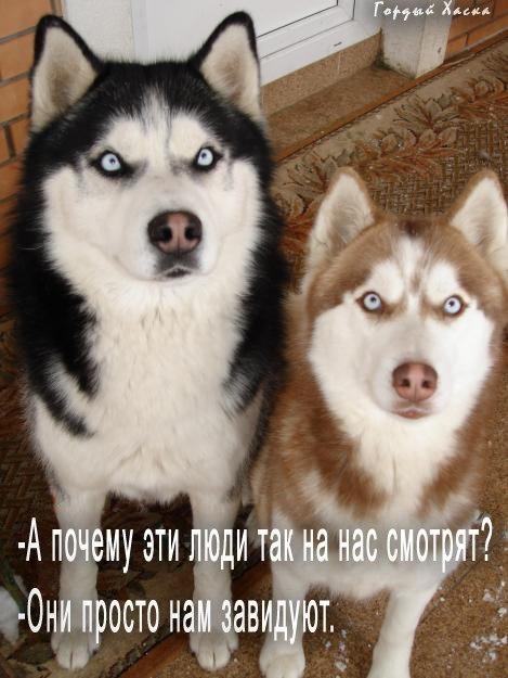 http://s3.uploads.ru/t/ZmMnv.jpg