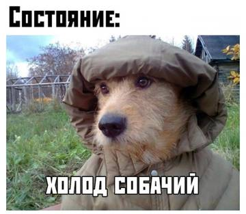 http://s3.uploads.ru/t/ZuNlT.jpg