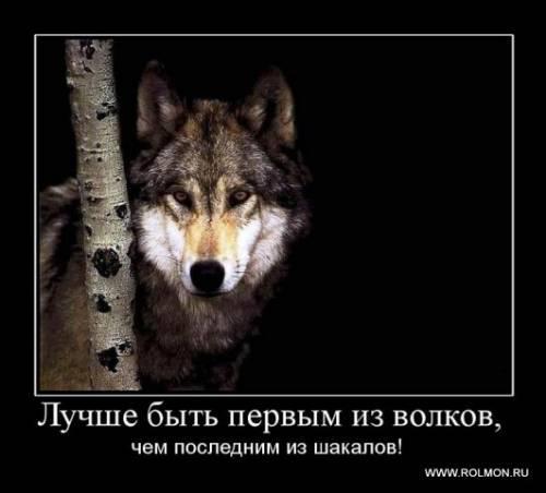 http://s3.uploads.ru/t/aCQKw.jpg