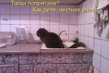 http://s3.uploads.ru/t/aGcVy.jpg