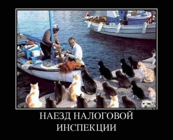 http://s3.uploads.ru/t/ax6y7.jpg