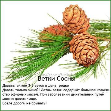 http://s3.uploads.ru/t/bGdYk.jpg
