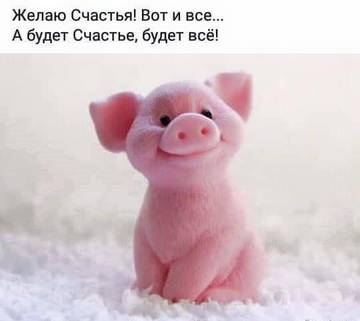 http://s3.uploads.ru/t/bLSRM.jpg