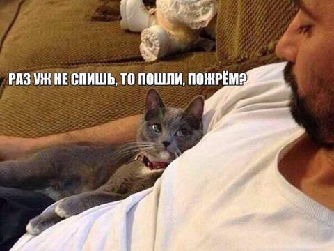 http://s3.uploads.ru/t/bqRku.jpg