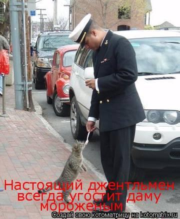 http://s3.uploads.ru/t/c7u53.jpg